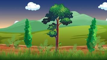 árboles en el viento por la tarde video