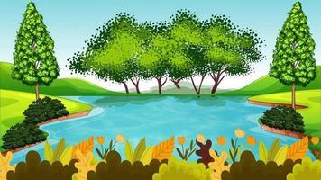 el pantano es ondulado en un día ventoso video