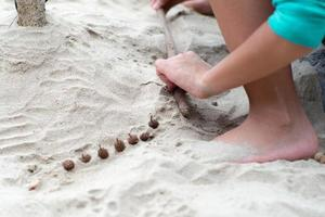 Hands of girl plays with the sand on the beach decorated by pine cones photo