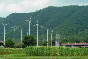 Landscape of windmill farm for generating electricity with a mountain in the background. Alternative and green energy concept. Sweet corn field in the windmills farm. photo