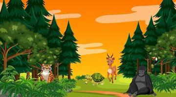 bosque al atardecer escena con diferentes animales salvajes vector