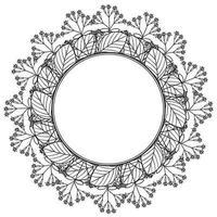 Quina border frame vector