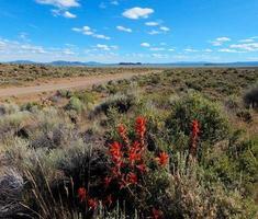 Alto panorama del desierto - una vista hacia el sur a lo largo de la carretera del lago de la cabaña con Fort Rock en la distancia - o foto