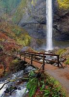 Latourell Falls - Guy W. Talbot State Park - Columbia River Gorge - OR photo