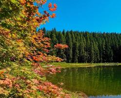 Early Autumn - Fay Lake - Cascade Range - south of Marion Forks, OR photo