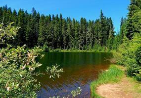Summertime at Tule Lake - Cascade Range - near Marion Forks, OR photo