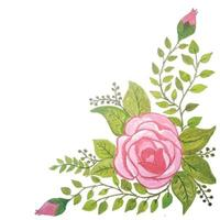 floral arrangements watercolor with green leaves vector
