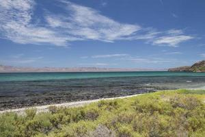 Beach with rocks under a sunny blue sky and vegetation in the peninsula of Baja California in Bahia Concepcion photo