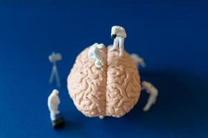Miniature people, scientists observing and discussing the human brain, medical healthcare and surgical doctor service concept. photo