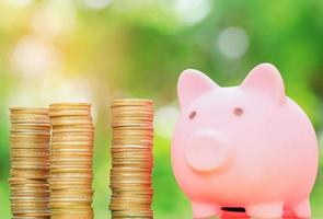 Piggy bank and coin with natural blurred background photo