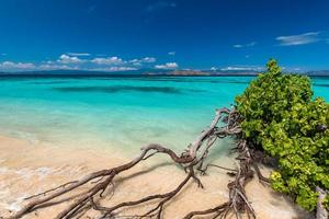 Beautiful beach. View of nice tropical beach. Holiday and vacation concept. Tropical beach. photo