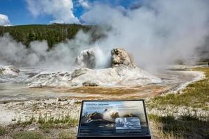 Grotto Geyser at the Yellowstone National Park. Wyoming. USA. August 2020 photo