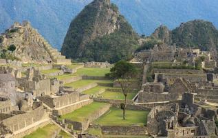 Inca sacred city of Machu Picchu Peru photo