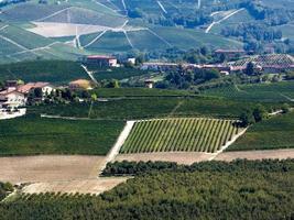 Langhe vineyards of Piedmont in autumn photo