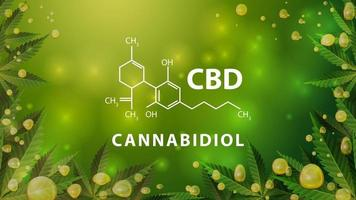 Chemical formula of CBD cannabidiol on green blurred background with cannabis leafs, and CBD oil gold bubbles vector