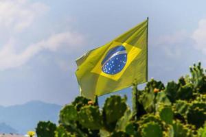 La bandera de Brasil se desvaneció al aire libre sobre un cactus en una playa de Río de Janeiro. foto