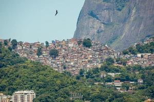 Rocinha slum in view of the Lagoa Rodrigo de Freitas in Rio de Janeiro. photo
