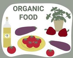 Organic vegetables food set Vegan food Healthy diet Vector illustration