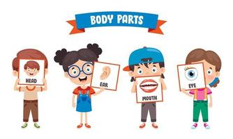 Funny Child Showing Human Body Parts vector