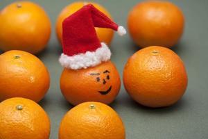 Mandarin in Santa hat photo