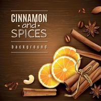 Cinnamon And Spices Background Vector Illustration