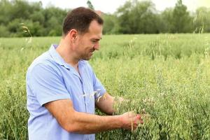 Man in an oat field photo