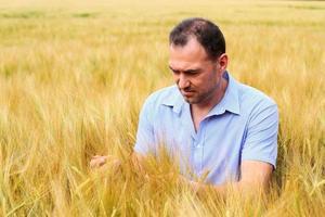 Man in rye field photo