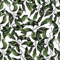 hojas verdes de patrones sin fisuras. Ilustración de vector de amanecer de mano