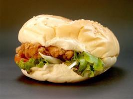 Hamburger fast food picture photo