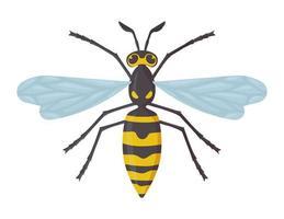avispa detallada aislada sobre fondo blanco insecto avispón concepto peligroso ilustración vectorial de stock en estilo de dibujos animados plana vector