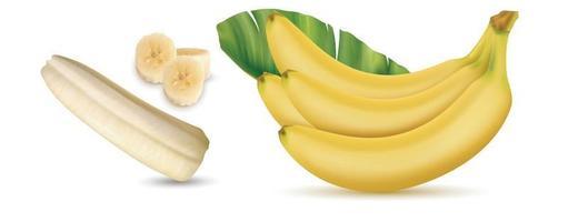 racimo de plátanos y rodajas vector