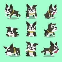 Cartoon character boston terrier dog poses vector