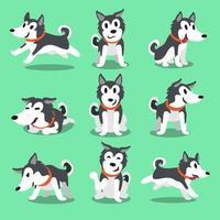 Cartoon character Siberian husky dog poses vector