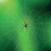 Spider Weaving Its Web Realistic Background Vector Illustration