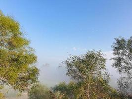 Misty view over Athalassa Lake in Cyprus with surrounding trees and over-flying birds photo