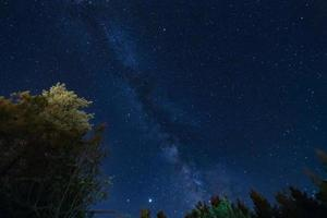 Milky Way over the Forest at the Troodos mountains in Cyprus photo