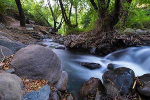 Corriente de agua pura con flujo suave sobre terreno montañoso rocoso en el bosque de Kakopetria en Troodos Chipre foto