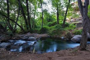 Corriente de agua pura que fluye sobre terrenos montañosos rocosos en el bosque de Kakopetria Troodos Chipre foto