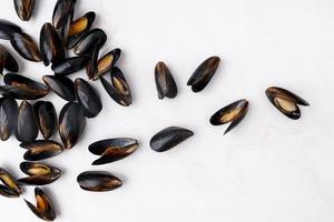 Scattered Mediterranean mussels flat lay photo
