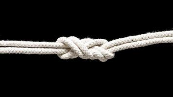 Ship white ropes tied in a knot photo