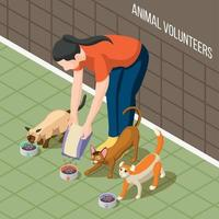 Cats Volunteer Isometric Background Vector Illustration