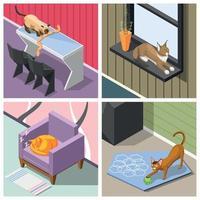 Purebred Cats Isometric Design Concept Vector Illustration