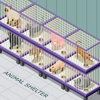 Cat Shelter Isometric Background Vector Illustration