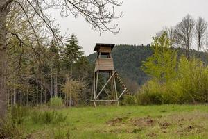 Asiento alto de cazador en el borde de un bosque foto