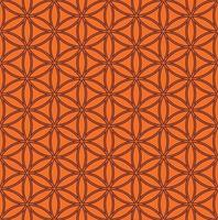 Flower of life pattern design vector