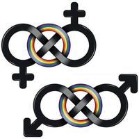 LGBT symbol united by infinity vector