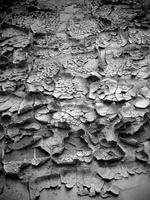 Black and white image of an old damaged wall with cracks on the paint photo