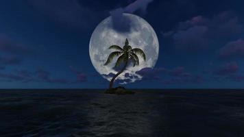 la vista de los árboles que crecen en medio del mar por la noche en la luna llena video