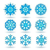 Collection of blue snowflakes on a white background vector