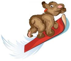 Vector image of a bear riding on a Board
